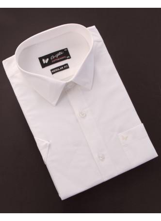 Shirt-Half-Sleeves